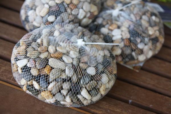 Cách trồng thủy tiên bằng củ không cần đất để trang trí nhà đón Tết, trồng ngay từ bây giờ để ra hoa đúng thời điểm - Ảnh 6.