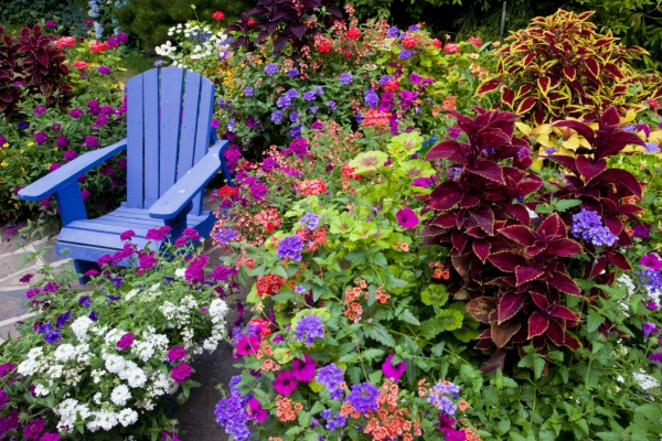 Rộn ràng hương sắc xuân trong sân vườn nhờ những ý tưởng làm đẹp sáng tạo - Ảnh 3.
