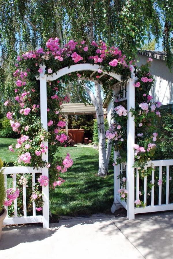 Những khu vườn trở nên lãng mạn và ngọt ngào nhờ cổng vòm rực rỡ sắc hoa - Ảnh 1.