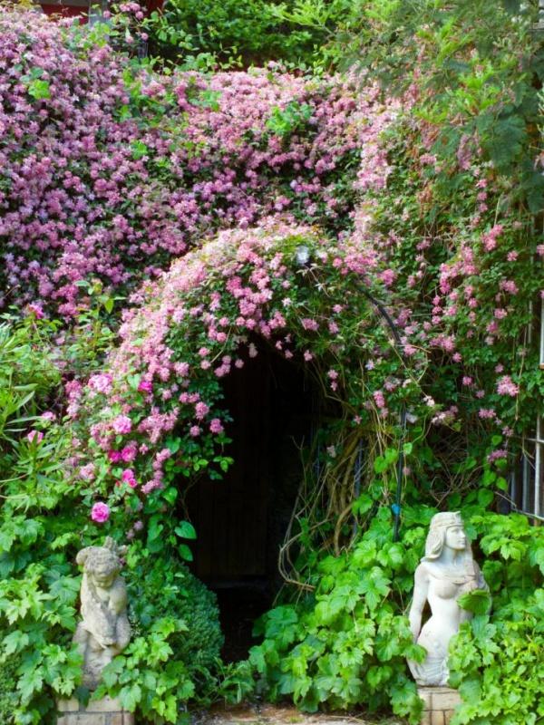 Những khu vườn trở nên lãng mạn và ngọt ngào nhờ cổng vòm rực rỡ sắc hoa - Ảnh 9.
