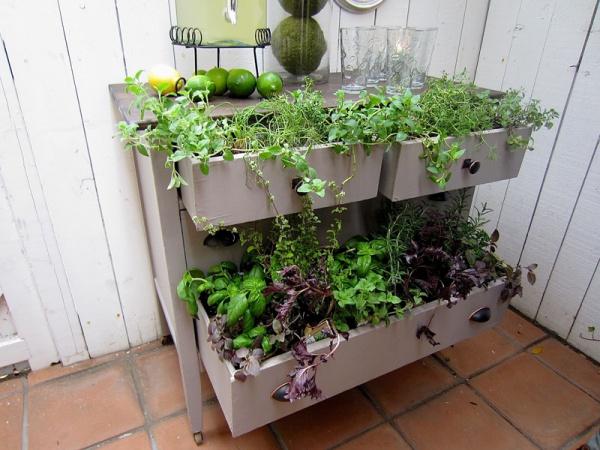 Tận dụng đồ bỏ đi trong nhà để trang trí khu vườn mùa hè thêm xanh mát - Ảnh 7.