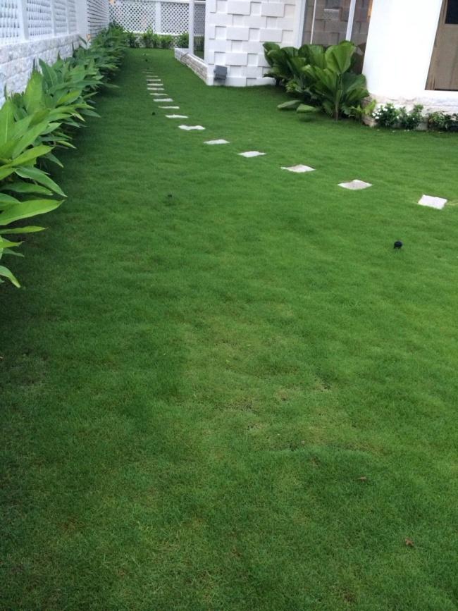 Biệt thự triệu đô ven sông với vườn rau xanh ngắt rộng đến 100m² của cặp vợ chồng hot nhất showbiz Việt: Thủy Tiên – Công Vinh - Ảnh 35.