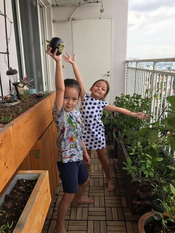 Căn hộ với hệ thống trồng rau sạch thông minh ở ban công của Diva Hồng Nhung giữa lòng Sài Gòn - Ảnh 8.