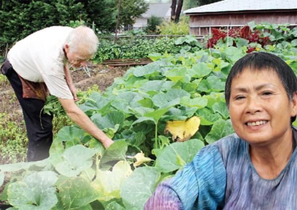 Vườn rau rộng tới 8000m² giữa thủ đô nước Mỹ của người phụ nữ Việt - Ảnh 6.