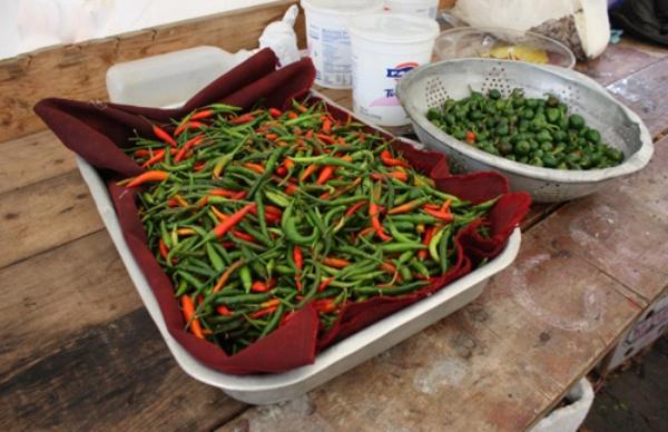 Vườn rau rộng tới 8000m² giữa thủ đô nước Mỹ của người phụ nữ Việt - Ảnh 13.