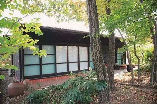 Cặp vợ chồng già bỏ phố về quê tận hưởng cuộc sống an nhàn bên ngôi nhà vườn rợp bóng cây xanh - Ảnh 5.