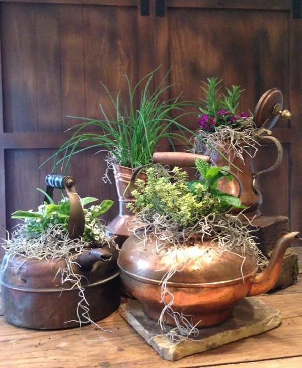 Gợi ý trồng cây, trồng hoa siêu ngọt ngào trong bộ ấm chén, bạn đã sẵn sàng để đón mùa xuân? - Ảnh 1.