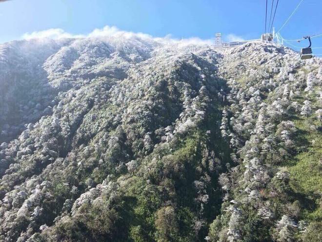 Tuyết phủ trắng xóa đỉnh Fansipan, du khách ngỡ ngàng như đang ở trời Âu - Ảnh 1.
