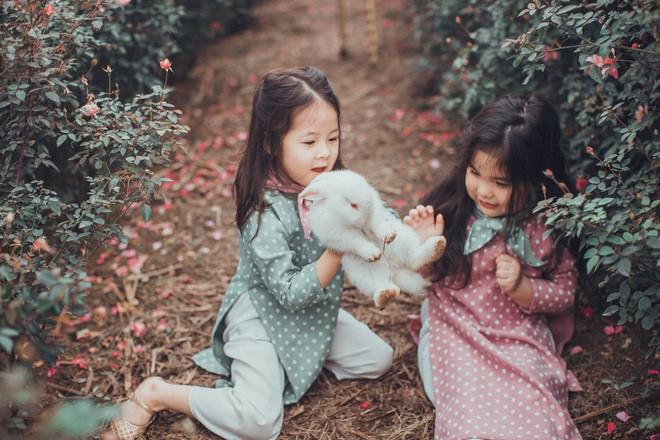 Cô bé sợ chó tái xuất trong bộ ảnh mới: Chụp ảnh với thỏ nhưng chỉ dám nhìn! - Ảnh 12.