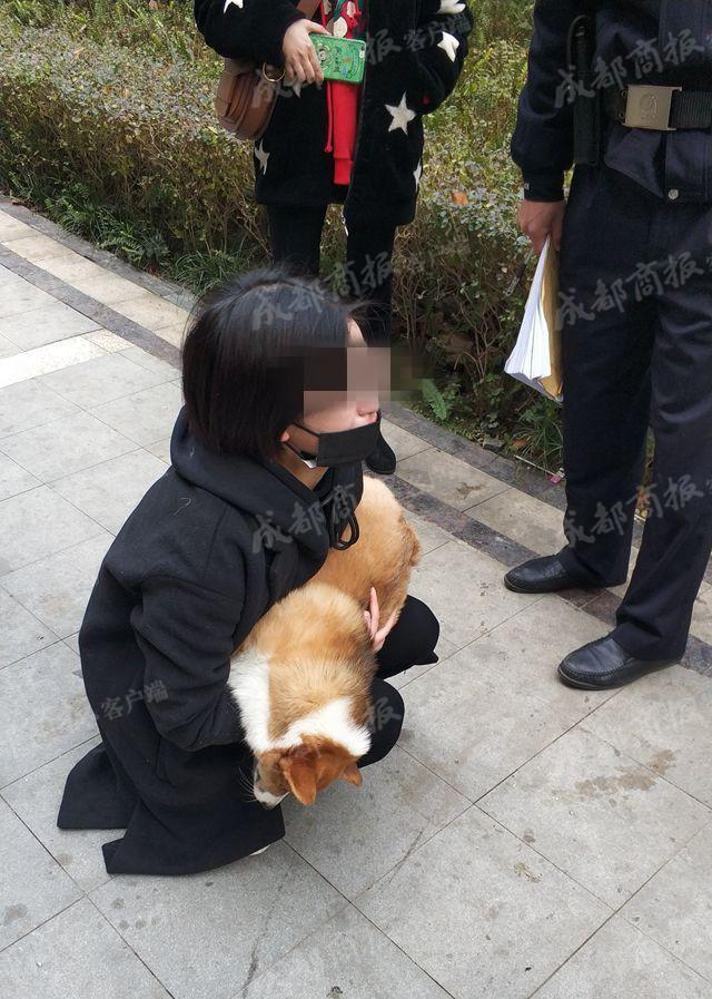 Giữ chó người khác mà quyết không trả, người phụ nữ tàn ác còn đẩy chú chó từ tầng 6 xuống đất - Ảnh 5.