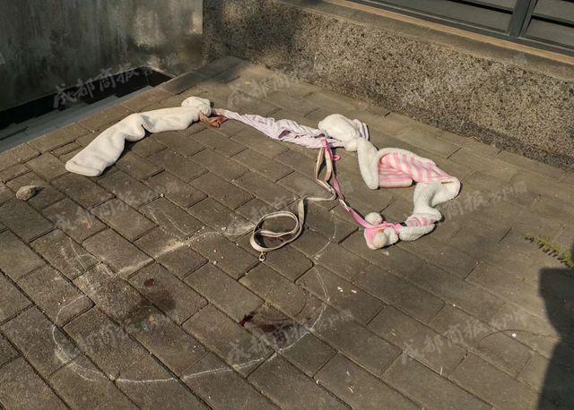 Giữ chó người khác mà quyết không trả, người phụ nữ tàn ác còn đẩy chú chó từ tầng 6 xuống đất - Ảnh 6.