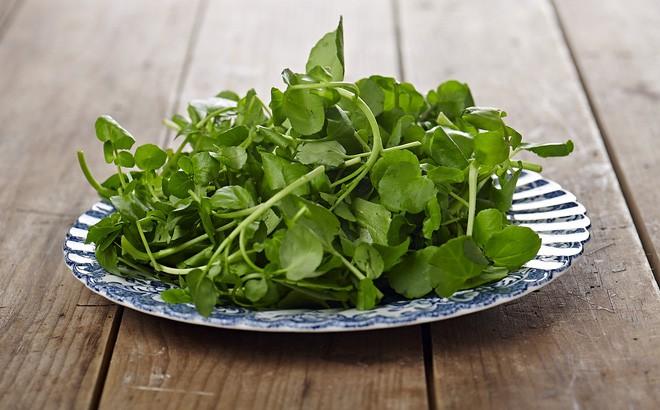 Vô vàn lợi ích từ rau cải xoong được chuyên gia Đông y nhấn mạnh đừng bỏ qua vào mùa đông này - Ảnh 4.