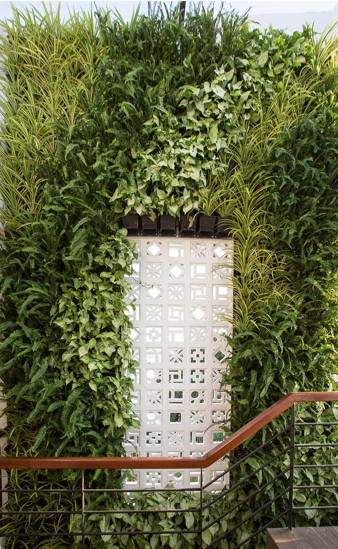 4 15463962687061640929798 - Ngôi nhà sâu đến 25m nhưng vừa xanh vừa thoáng nhờ hệ giếng trời và vườn đứng cực thông minh ở Đà Nẵng