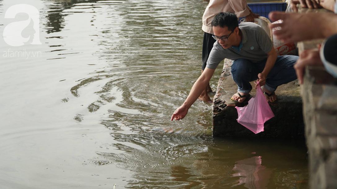 TP.HCM: Cá chép cúng ông Táo vừa thả xuống sông chưa kịp về trời đã bị chích điện, vớt lên bán lại - Ảnh 1.