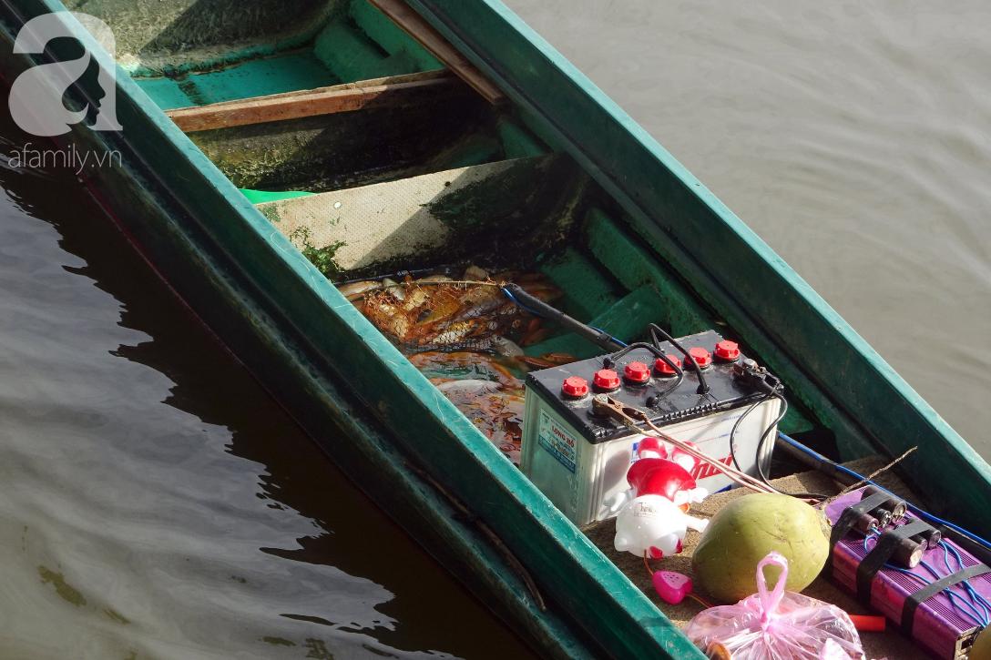 TP.HCM: Cá chép cúng ông Táo vừa thả xuống sông chưa kịp về trời đã bị chích điện, vớt lên bán lại - Ảnh 3.