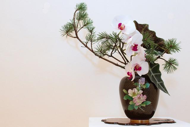 Vẻ đẹp Ikebana – nâng niu đóa hoa nhan sắc
