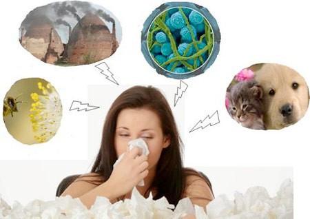 Phân biệt bệnh viêm mũi dị ứng và viêm mũi thông thường - 2 bệnh nhiều người mắc khi thời điểm giao mùa  - Ảnh 1.