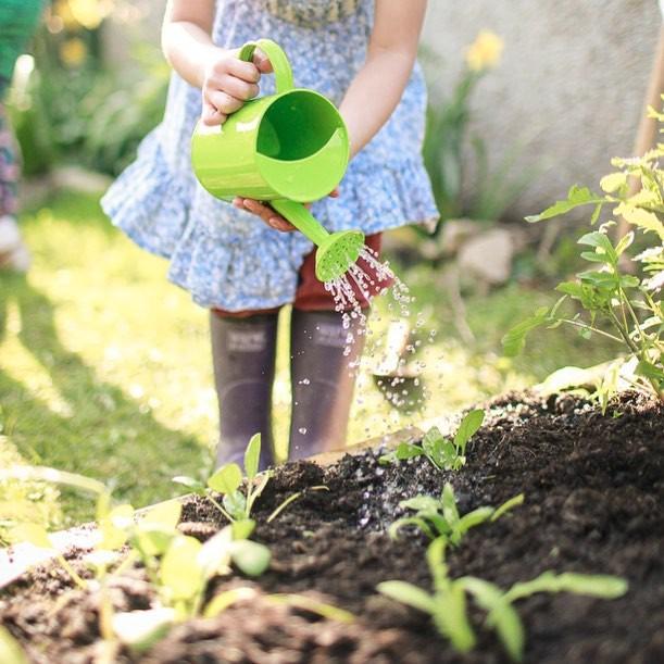 Người đàn ông tự trồng rau quả sạch trên mảnh vườn rộng 225m2 của gia đình ở ngoại ô - Ảnh 17.