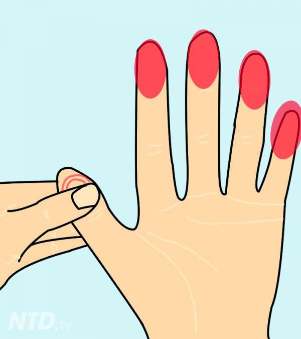 Chỉ cần ấn vào điểm này trên tay 1 phút, bạn sẽ cảm nhận rất nhiều điều kỳ diệu xảy ra với cơ thể - Ảnh 4.
