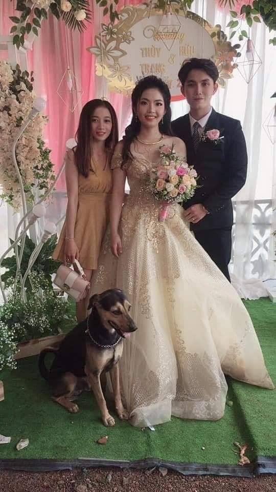 Tấm hình hài nhất đám cưới nhà người ta: Cô dâu lao ra đường, lôi bằng được chó cưng về chụp ảnh cùng! - Ảnh 4.