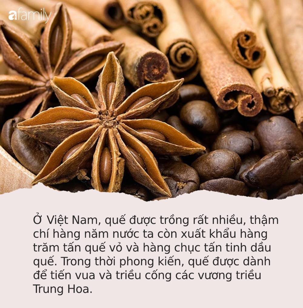 Tốt ngang nhụy hoa nghệ tây, ở Việt Nam cũng có loại gia vị được mệnh danh là TỨ BẢO của Đông y, trị bệnh hay dưỡng nhan đều xuất sắc - Ảnh 1.