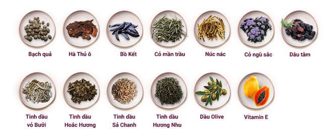 Dầu gội dược liệu: Tôn vinh vẻ đẹp mái tóc hiện đại của người phụ nữ Việt - Ảnh 3.