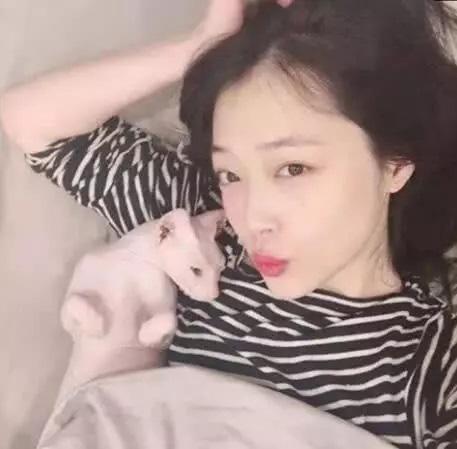 Thương em gái như thành viên Super Junior - Heechul, sẵn sàng nhận nuôi mèo của Sulli sau khi cô ra đi - Ảnh 3.