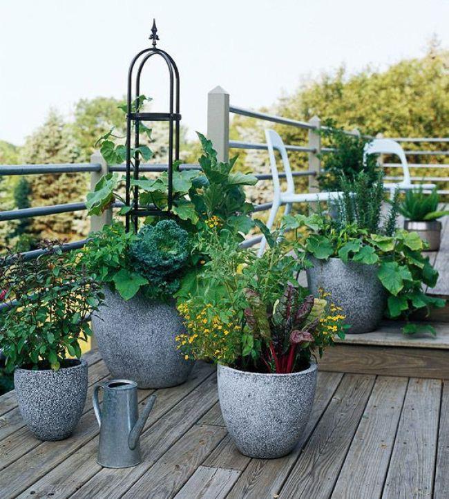 Những ý tưởng cùng mẹo thiết kế vườn rau siêu tuyệt vời giúp không gian nhỏ hẹp cũng thành đáng mơ ước - Ảnh 11.