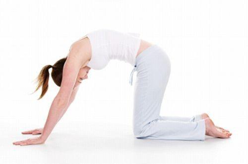 Học người Nhật bí quyết giảm 4kg trong 1 tháng, thu nhỏ thêm 10cm vòng eo nhờ bài tập yoga quen thuộc - Ảnh 5.