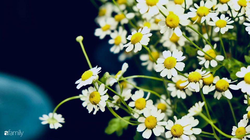 Ngày đầu năm ghé thăm những góc nhỏ dịu dàng sắc hoa trong căn nhà ấm cúng của bà mẹ trẻ Hà Nội - Ảnh 25.