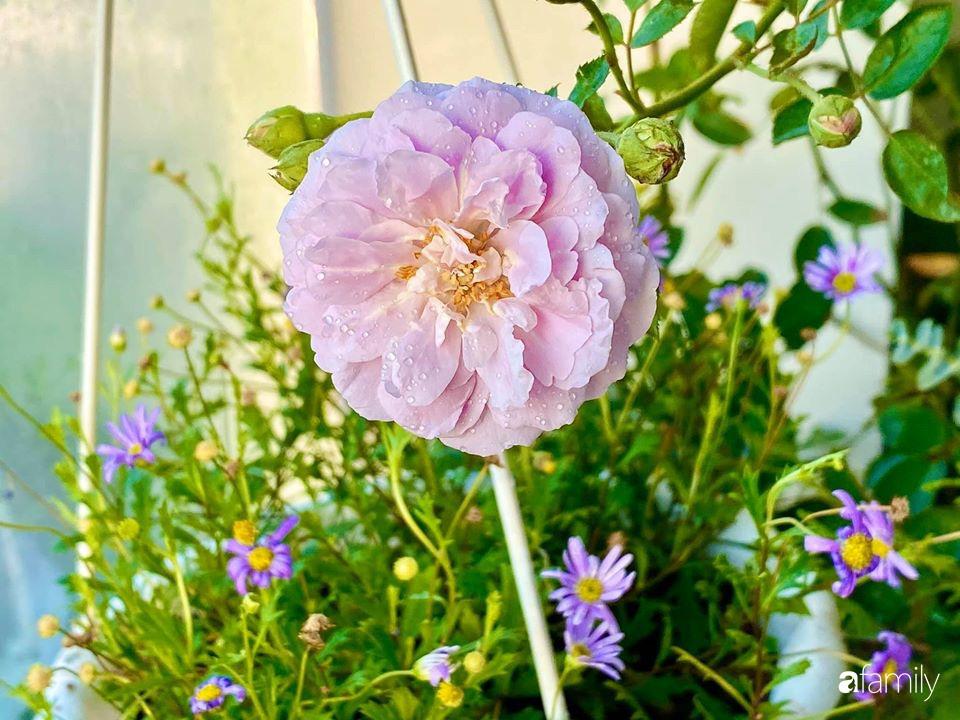 Ngày đầu năm ghé thăm những góc nhỏ dịu dàng sắc hoa trong căn nhà ấm cúng của bà mẹ trẻ Hà Nội - Ảnh 17.