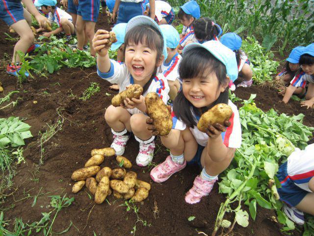 """Mở """"cánh cửa thần kì"""" dinh dưỡng chuẩn Nhật - bí quyết nuôi con mạnh khỏe, lớn khôn mỗi ngày - Ảnh 2."""