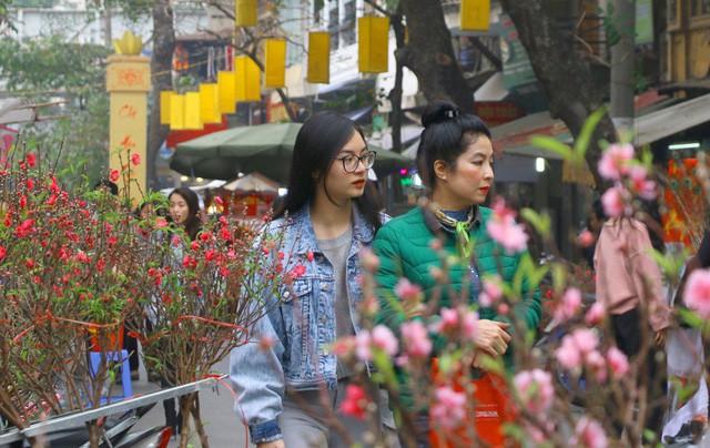 Gợi ý lịch trình 3 ngày ăn chơi Tết dành cho thị dân Sài Gòn - Ảnh 2.