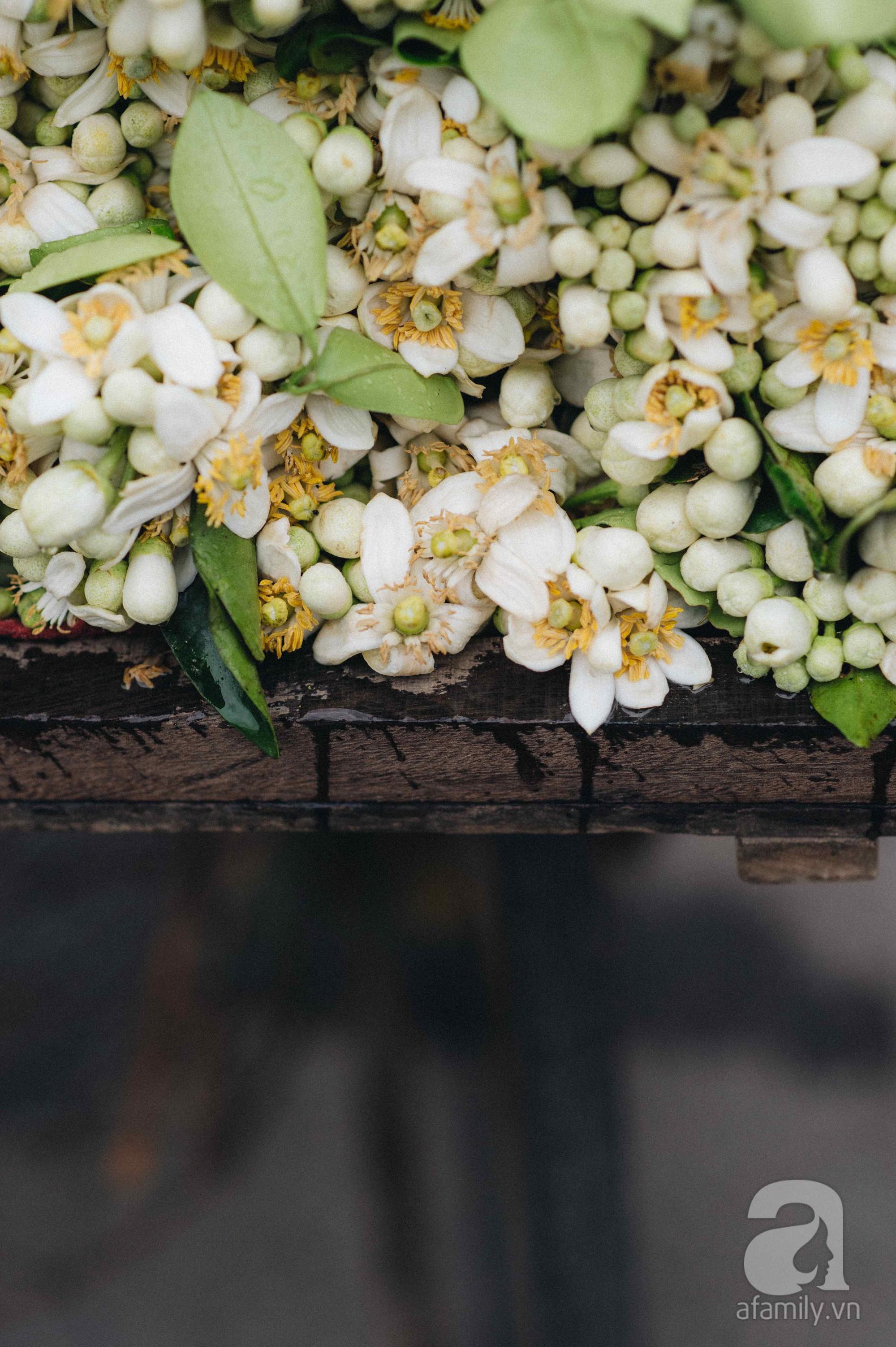Cứ thấy 4 loài hoa này xuất hiện thì biết ngay tháng 3 đã về rồi - Ảnh 2.