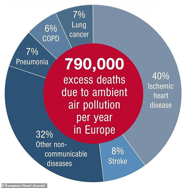 Tổ chức Y tế Thế giới cảnh báo: Còn hơn cả thói quen hút thuốc lá, đây mới là thủ phạm giết 8,8 triệu người mỗi năm - Ảnh 1.