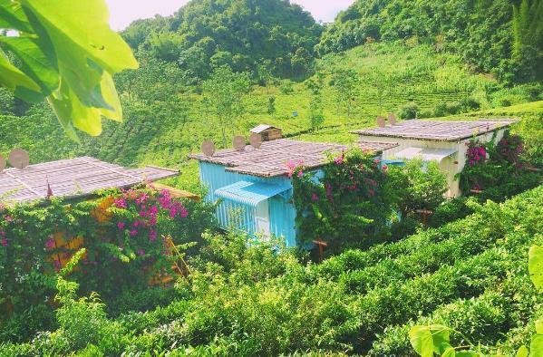 Nghỉ lễ đi Mộc Châu hái mận đầu mùa, ghim ngay 5 homestay mới nổi xinh xắn, phong cảnh hữu tình này - Ảnh 13.
