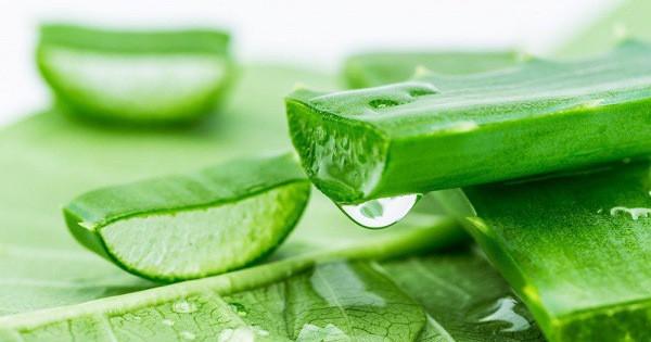 10 loại rau củ giúp trị mụn - Ảnh 2.