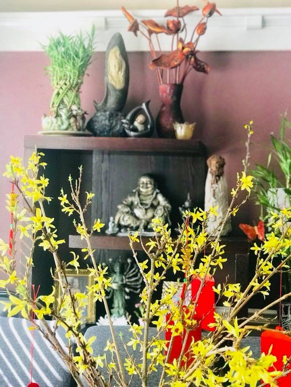 Căn biệt thự độc đáo có 112 ô cửa sổ của bà già bán khoai quê Quảng Trị nổi tiếng Vbiz - Ảnh 10.