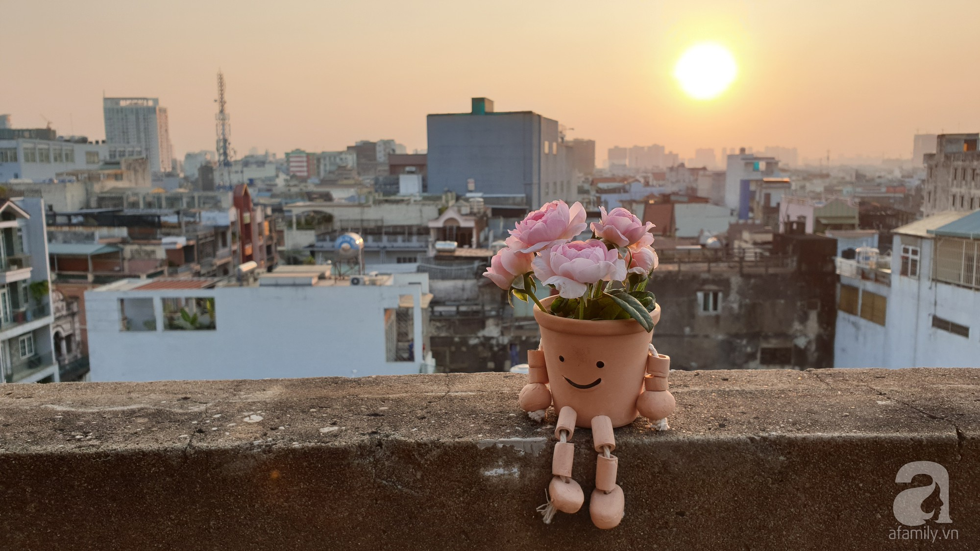Vườn hồng trên sân thượng rực rỡ sắc màu của chàng trai 8x siêu đảm ở Sài Gòn - Ảnh 17.