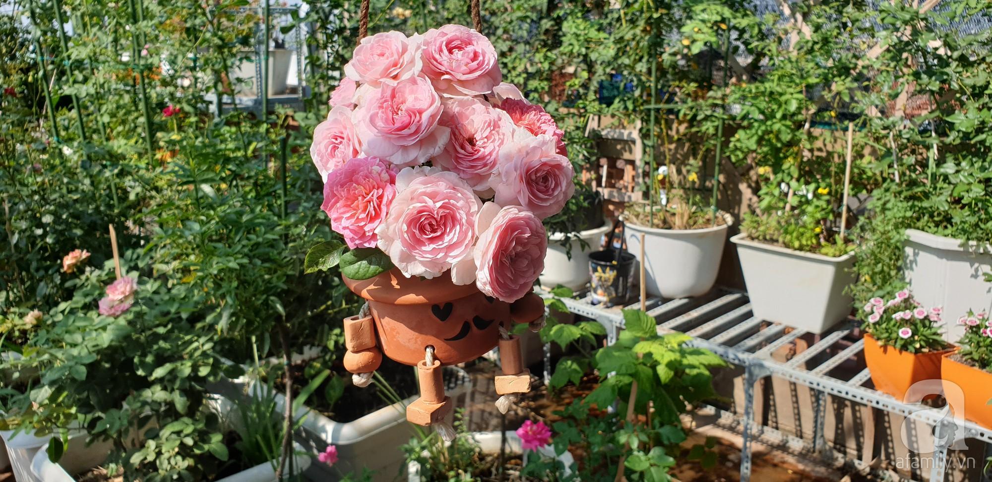 Vườn hồng trên sân thượng rực rỡ sắc màu của chàng trai 8x siêu đảm ở Sài Gòn - Ảnh 5.