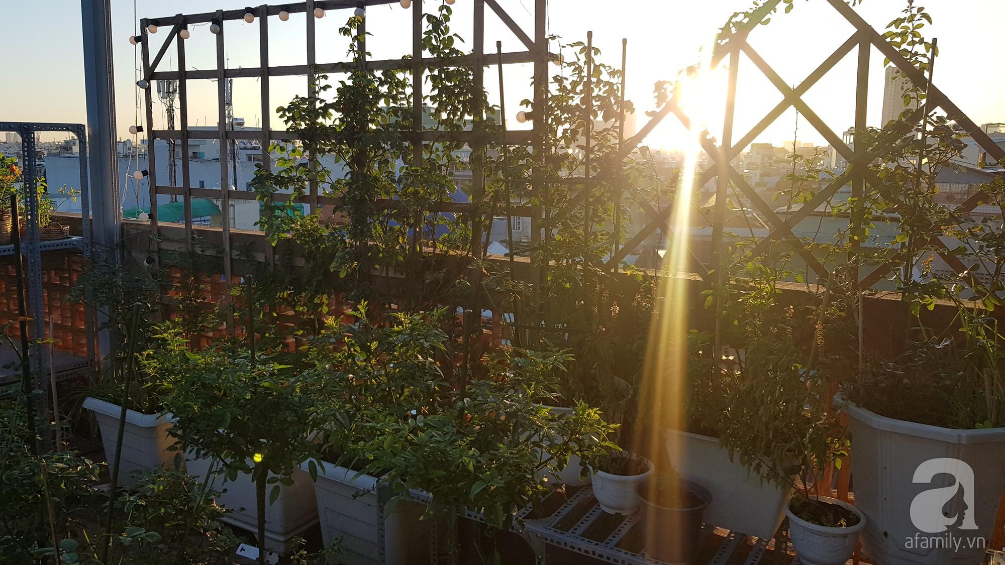 Vườn hồng trên sân thượng rực rỡ sắc màu của chàng trai 8x siêu đảm ở Sài Gòn - Ảnh 3.