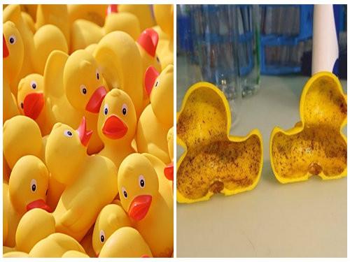 Phát hiện hóa chất gây vô sinh 'tiềm ẩn' trong vịt cao su đồ chơi trẻ em Trung Quốc - Ảnh 1.