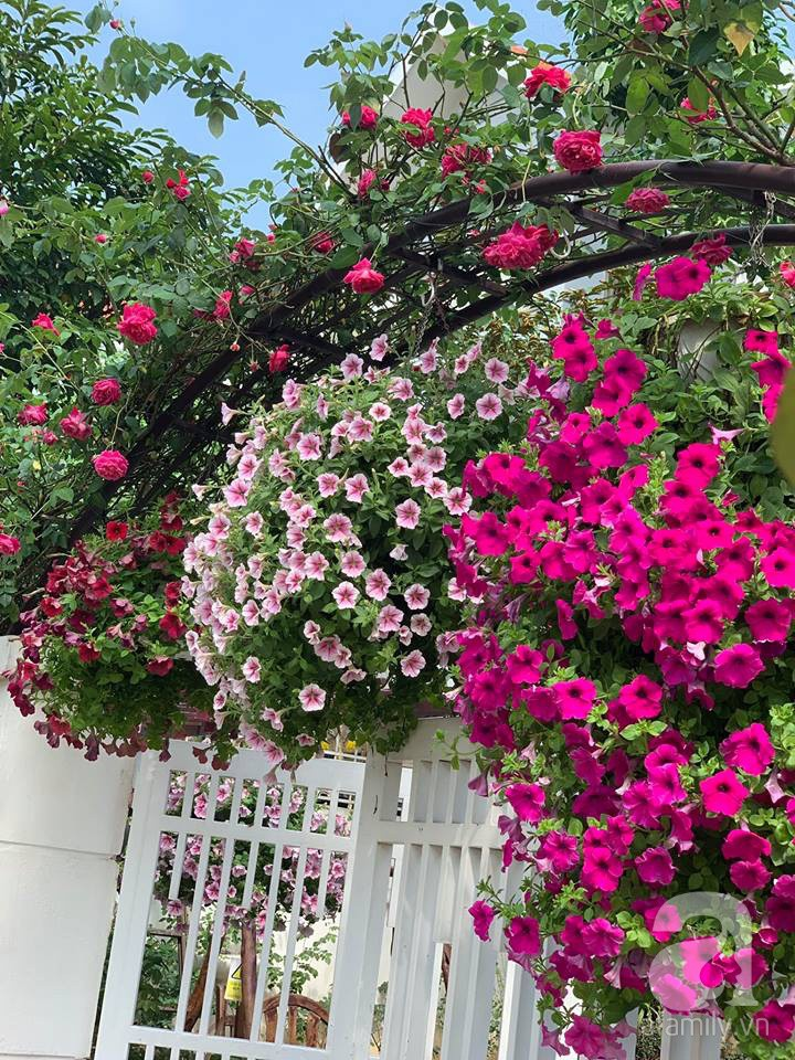 Cuộc sống bình yên của người đàn ông trong ngôi nhà phủ kín hoa hồng ở Hà Nội - Ảnh 32.