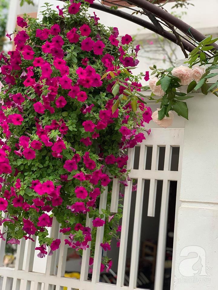 Cuộc sống bình yên của người đàn ông trong ngôi nhà phủ kín hoa hồng ở Hà Nội - Ảnh 31.