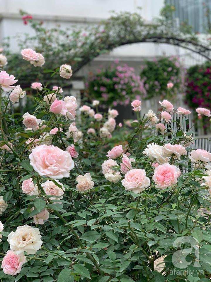Cuộc sống bình yên của người đàn ông trong ngôi nhà phủ kín hoa hồng ở Hà Nội - Ảnh 16.