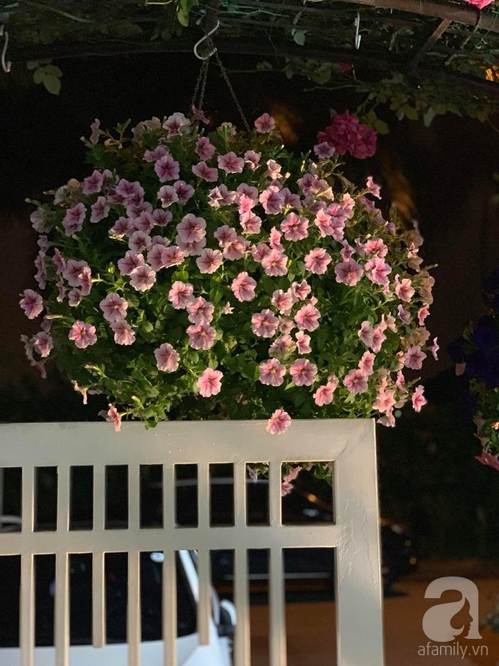 Cuộc sống bình yên của người đàn ông trong ngôi nhà phủ kín hoa hồng ở Hà Nội - Ảnh 29.