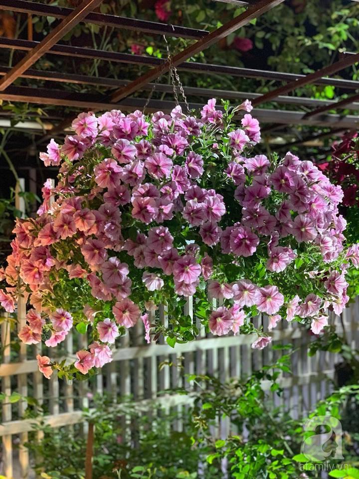 Cuộc sống bình yên của người đàn ông trong ngôi nhà phủ kín hoa hồng ở Hà Nội - Ảnh 26.