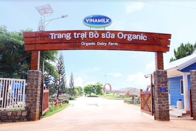 Cần 1 nơi để gia đình khám phá thiên nhiên: Hãy thử 1 ngày trải nghiệm ở trang trại bò sữa Vinamilk Organic Đà Lạt - Ảnh 1.