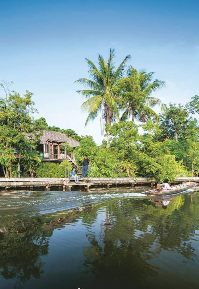 Ngôi nhà gỗ bất chấp nắng nóng, chỉ có gió mát và ánh sáng ngập tràn giữa rừng cây xanh - Ảnh 3.