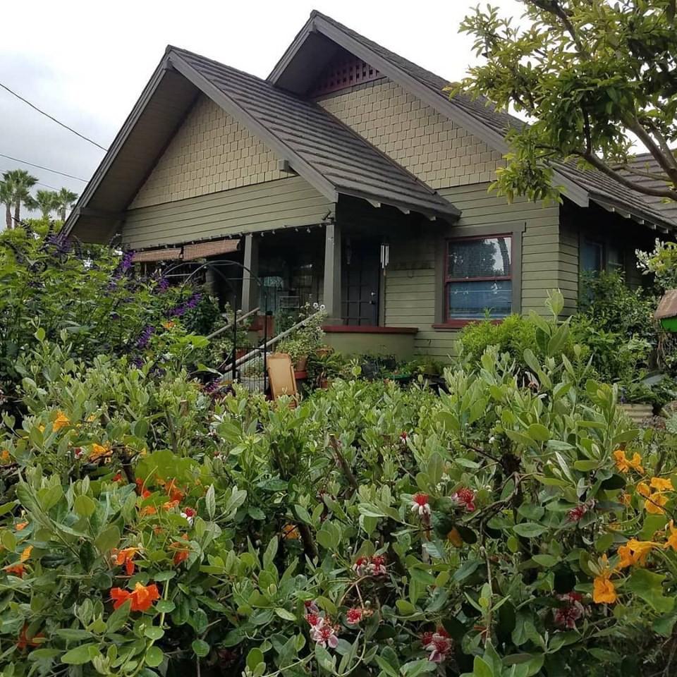 Gia đình nhiều thế hệ chung sống hạnh phúc bên ngôi nhà yên bình cùng mảnh vườn trồng rau quả sạch rộng 4000m2 - Ảnh 4.